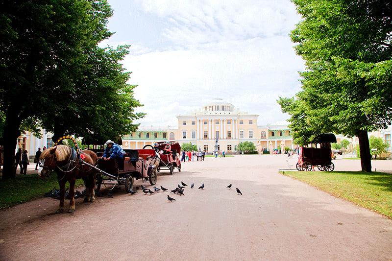 Экскурсия в Павловск (дворец + парк)